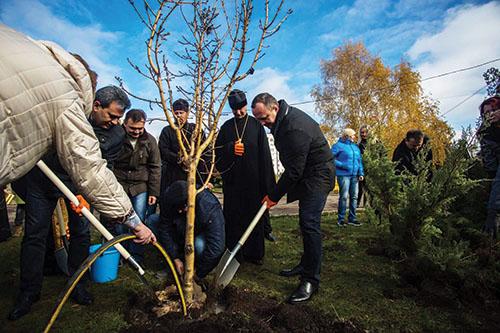Na Ukrajine zasadili stromy pokoja