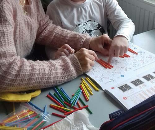Domáce vzdelávanie